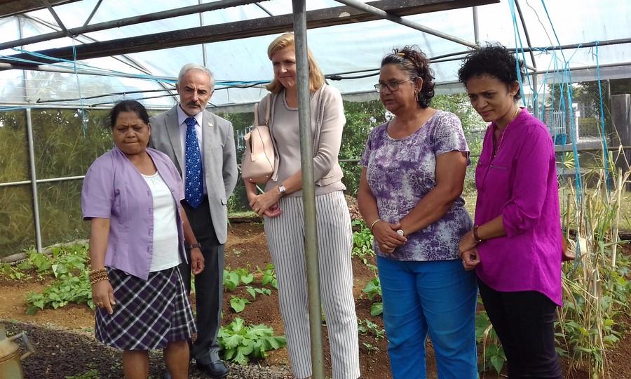 Visite de la serre Bio en compagnie de Mme Marianne Cohet